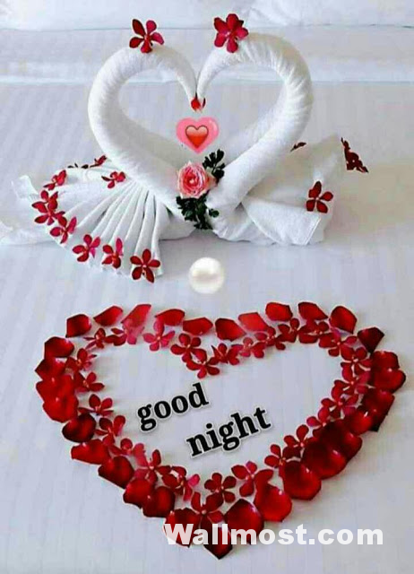 Good Night Wallpapers Pictures Images Photos 1