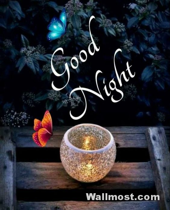 Good Night Wallpapers Pictures Images Photos 13