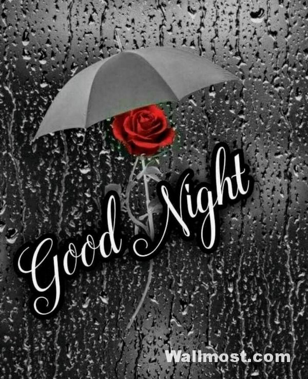 Good Night Wallpapers Pictures Images Photos 15