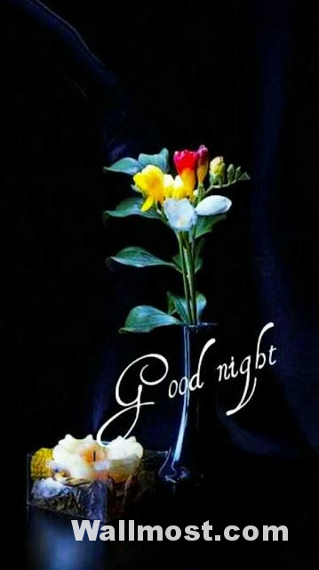 Good Night Wallpapers Pictures Images Photos 18