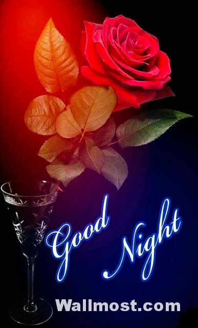 Good Night Wallpapers Pictures Images Photos 19