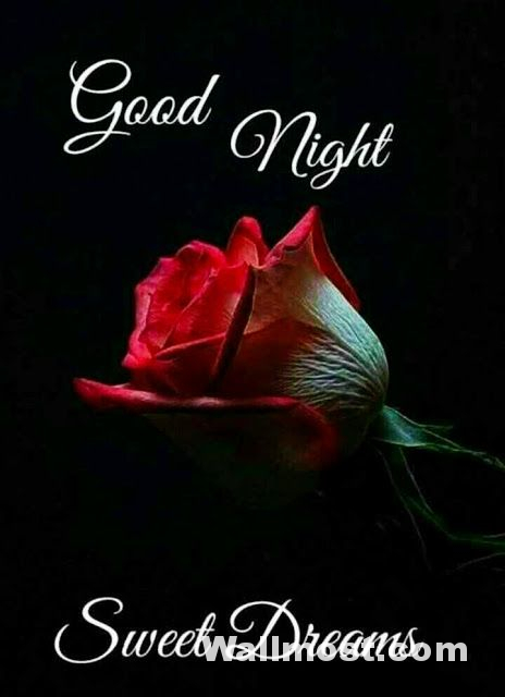 Good Night Wallpapers Pictures Images Photos 2