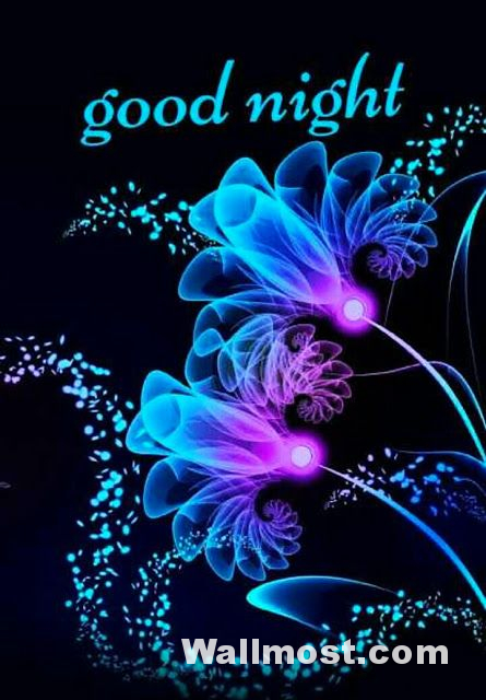 Good Night Wallpapers Pictures Images Photos 20