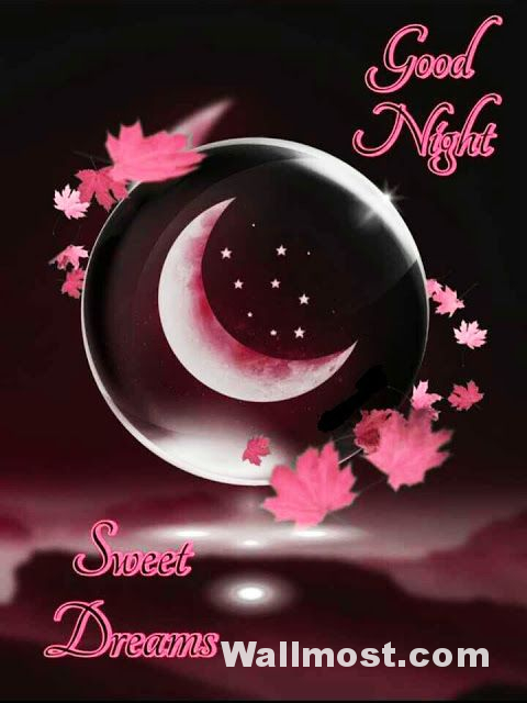 Good Night Wallpapers Pictures Images Photos 21