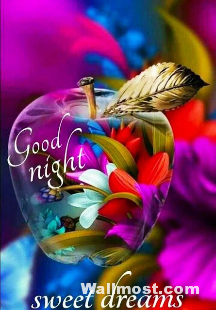 Good Night Wallpapers Pictures Images Photos 4
