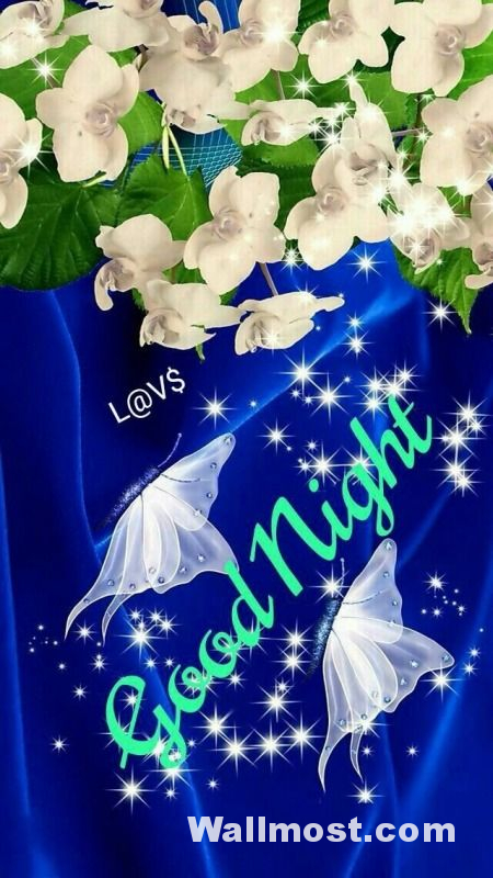 Good Night Wallpapers Pictures Images Photos 5