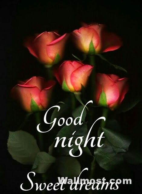 Good Night Wallpapers Pictures Images Photos 7