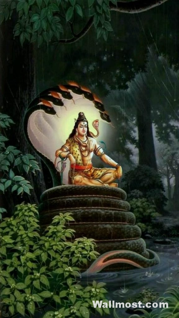 Mahadev Wallpapers Pictures Images Photos 4