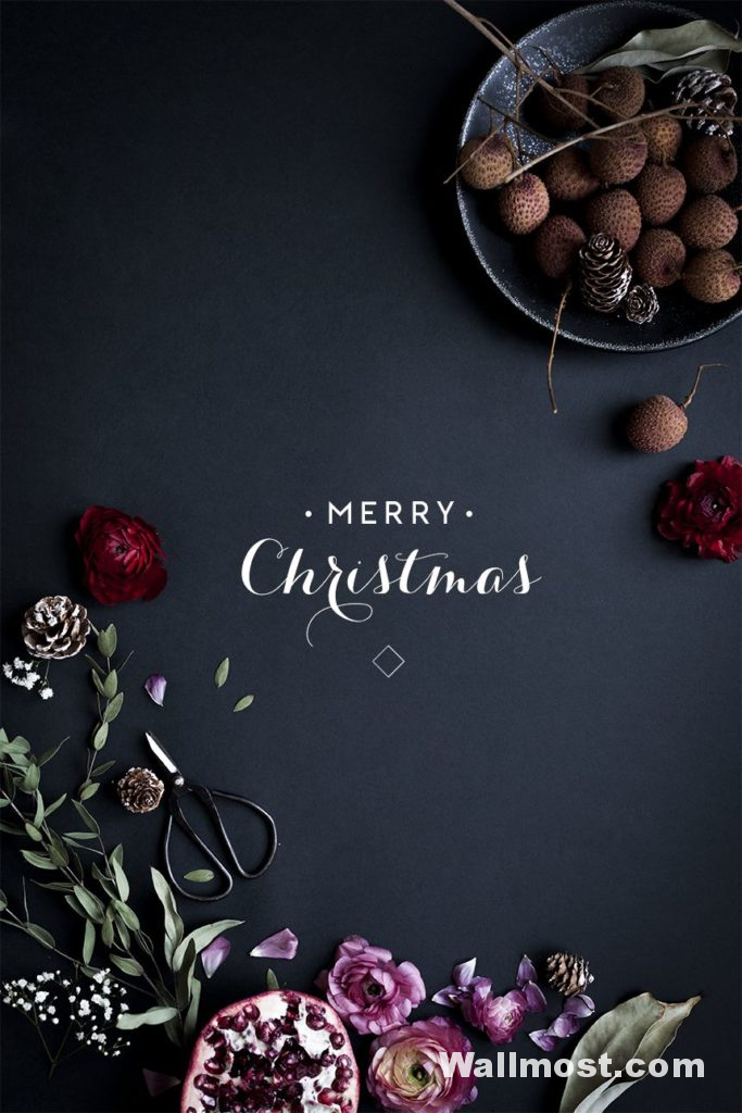 Merry Christmas Wallpapers Pictures Images Photos 20