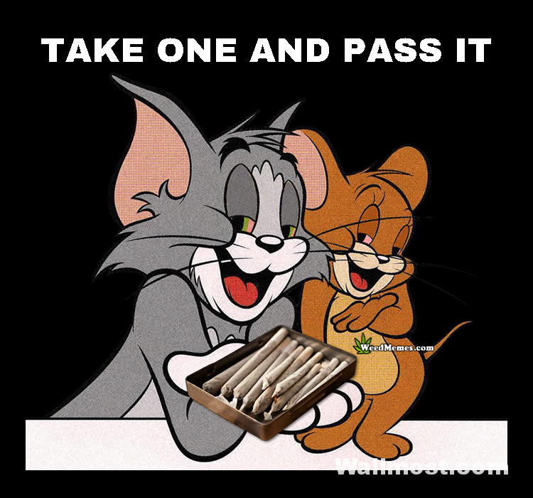 Tom And Jerry Memes Wallpapers Pictures Images Photos 11