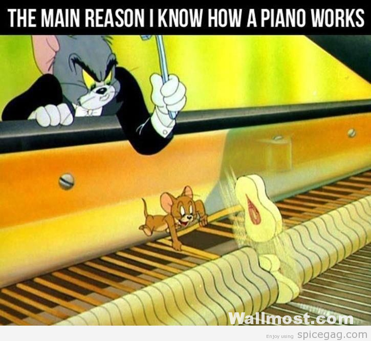 Tom And Jerry Memes Wallpapers Pictures Images Photos 12