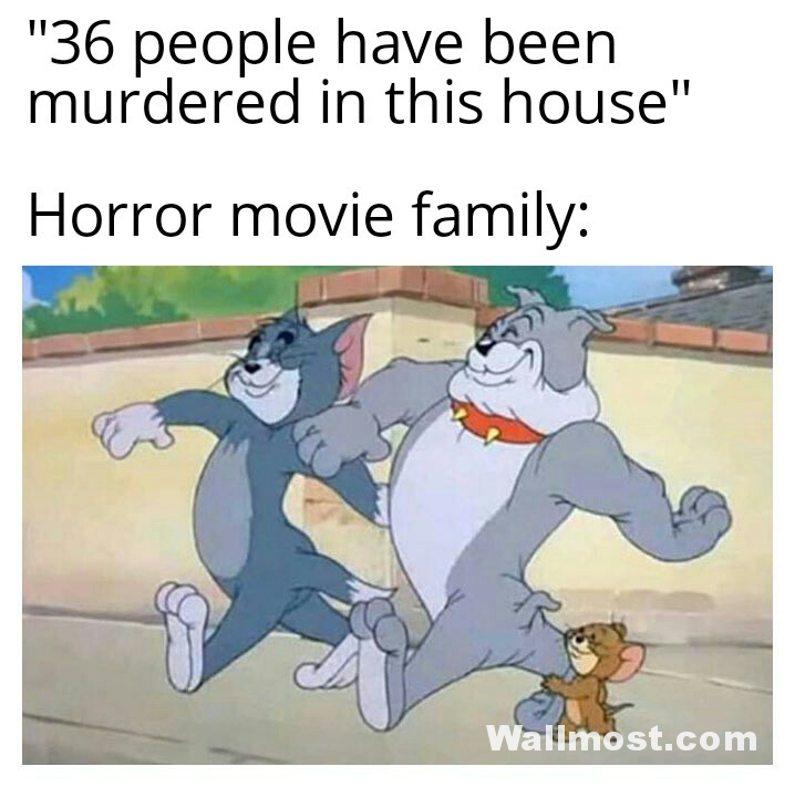 Tom And Jerry Memes Wallpapers Pictures Images Photos 24