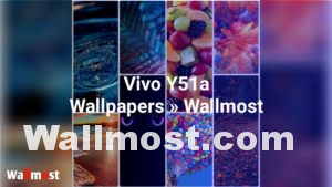 Vivo Y51a Wallpapers
